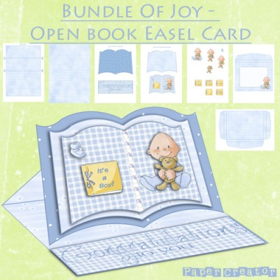 Bundle Of Joy - Open Book Easel Card